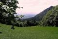 widok z przełęczy Szopka na Tatry