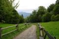 w drodze na przełęcz Szopka