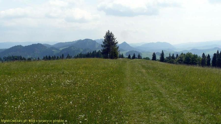 z grzbietu Barwinkowej Góry na Pieniny Czorsztyńskie