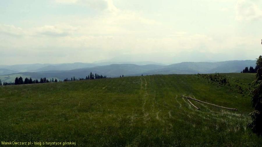 polana podszczytowa pod górą Żar