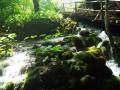 plitwickie-jeziora-43_1024_x_768