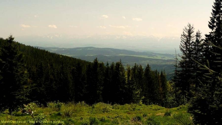Tatry widziane z Hali Krupowej