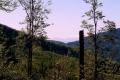 Tatry widziane z Mosornego Gronia