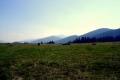 łąki nad Wielkim Borowym