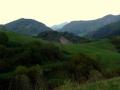 zielona dolina Mała Turecka