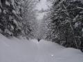szlak na Rusinową Polane
