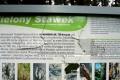 tablica nad Zielonym stawem