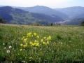 pasmo jaworzyny 2007 007_(1024_x_768)