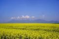 widok na Tatry Wysokie z drogi Spiska Bela - Kieżmarok