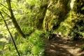 Madzia w zielonym Słowackim Raju