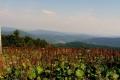 panorama z grani Smreka