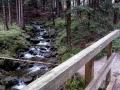 potok w dolinie Sowiej