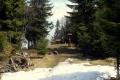 polana szczytowa na Śnieżnicy