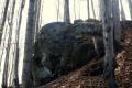 wychodne skalne na zboczach Szczebla