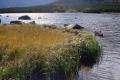 wody Białego satwu