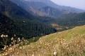 dolina Zadnich Kopereszadów