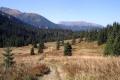 jesiennie  w dolinie Zadnich Koperszadów
