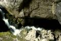 potok Cetatii ginie w jaskini