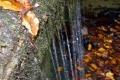 wodospad-magurski-039_1024_x_768