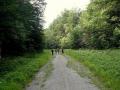 stara droga na przełęcz Stare Koniarky