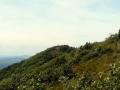 krajobraz szczytowy