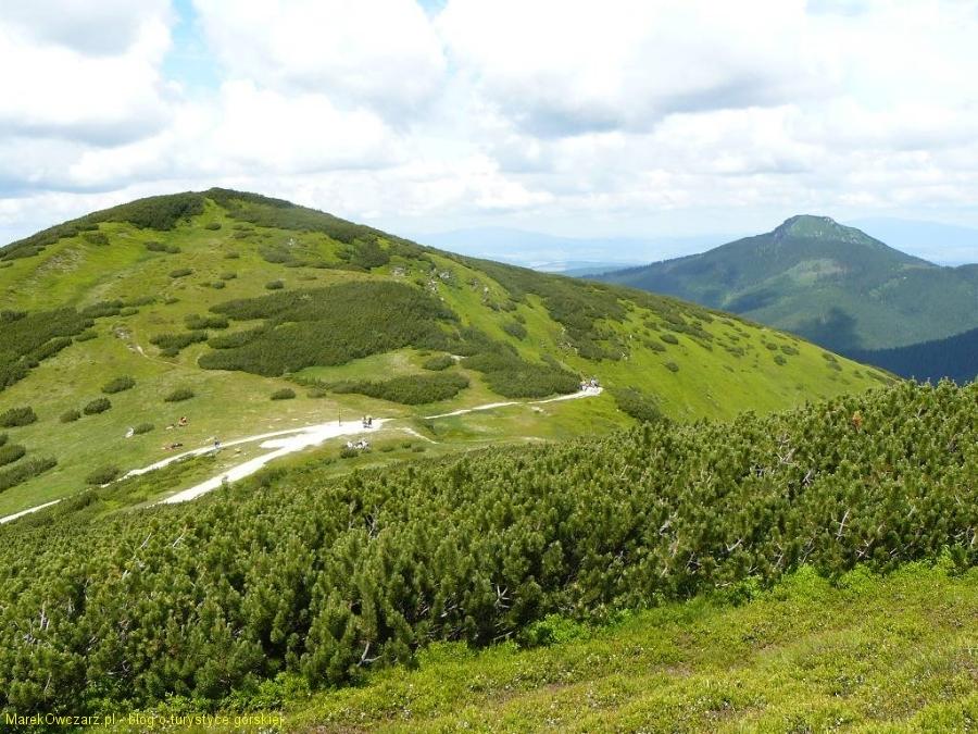 sedlo Zabrat , w tle Osobita- ostatni szczyt Tatr