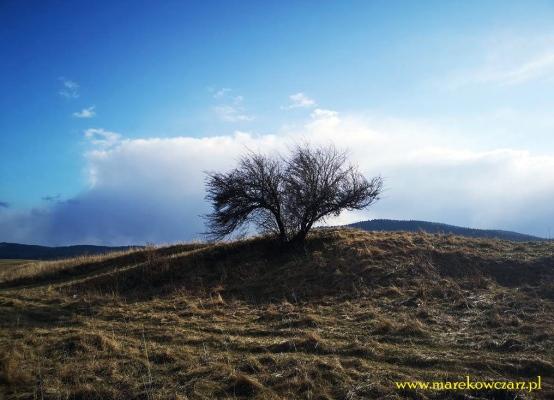 mrukowa-beskid-niski-27