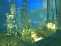 dol.zimnej wody (5)