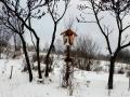 Niemcowa I.2017 001_(1024_x_768)