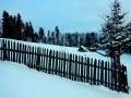 Niemcowa I.2017 125_(1024_x_768)