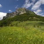 Góry to marzenia…