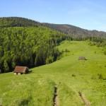 Gorczańska wyrypa przez Gorca i Kudłonia na Turbacza