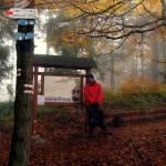 Z Kudłaczy przez pasmo Lubomira i Łysiny w deszczu i mgle.