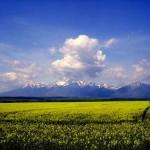 Podlesok – Przełomy Hornadu – Klastorisko – Sokolia Dolina – Wielka Polana – Podlesok