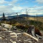 Przez Malinowską Skałę na ławeczkę na Baraniej Górze