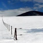 W rakietach śnieżnych na Lackową