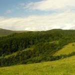 Pikuj – najwyższy szczyt Bieszczad zdobyty majową porą