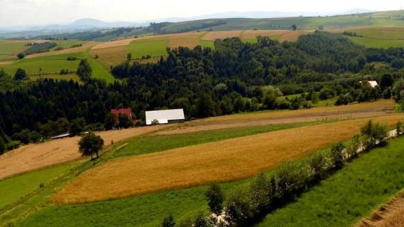 malownicze łąki i pola