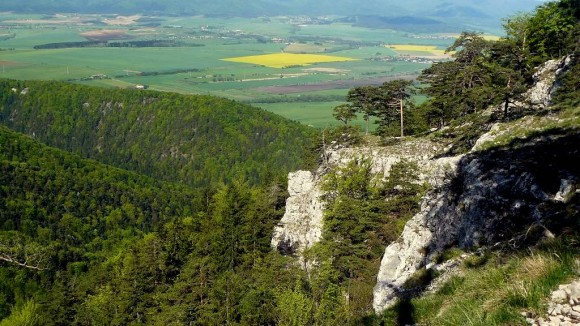 widok ze zboczy Tlstej
