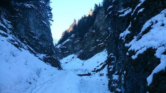 wąski kanion w Wąwozie Szopczańskim