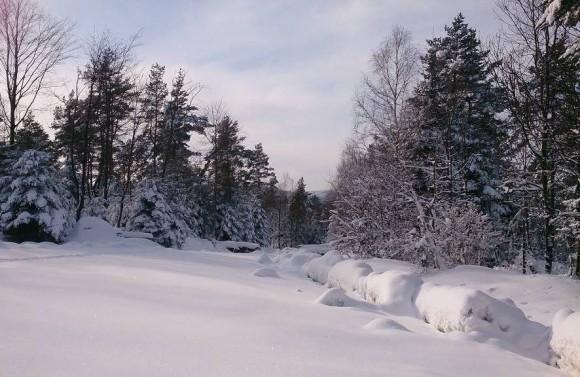 cudowna zima w okolicach Przełęczy Majdan