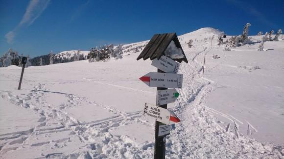 z przełęczy Brona spojrzenie w kierunku Małej Babiej Góry