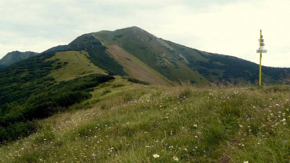 Mały Krywań widziany z przełęczy Priehyb