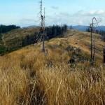W Górach Lewockich –  na Čiernej Horze, czyli oswajanie dawnego poligonu