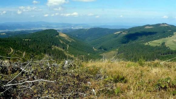 krajobraz Gór Lewockich z głównego grzbietu