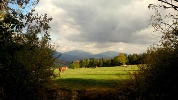 Śnieżnica i Ćwilin widziane z przełęczy Glisne
