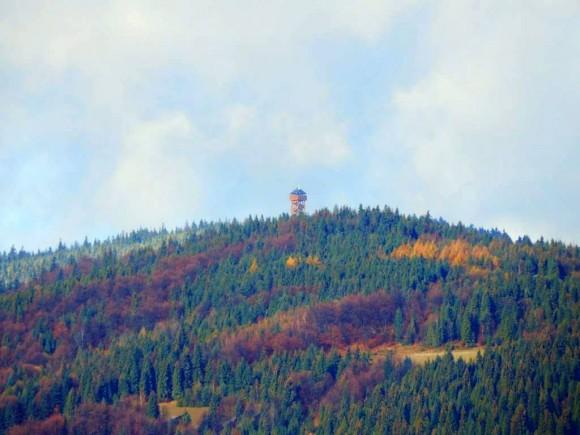 widok na wieżę z jednej z polan