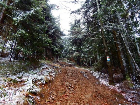 szeroka droga na szczyt już na głównym grzbiecie Lubania