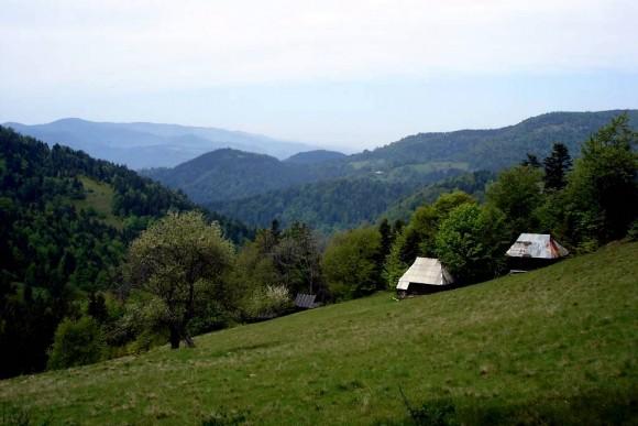 panorama Beskidu Sądeckiego z grzbietu Parchowatki