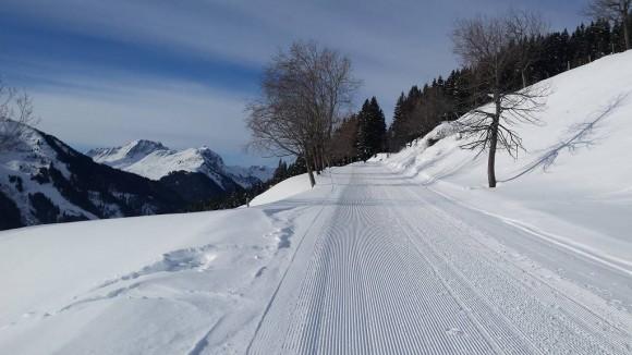biegowo-spacerowa trasa u podnóży wierzchołka Reiterkogela